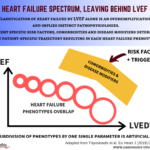 Heart failure spectrum