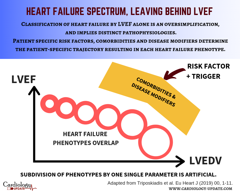 Leaving behind left ventricular ejection fraction: heart failure classification using pathophysiological reasoning